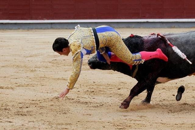 Rubén Pinar, herido muy grave en Las Ventas