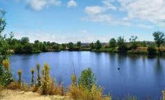 Retiran 42 toneladas de residuos de la laguna de Arganda para transformarlos en energía