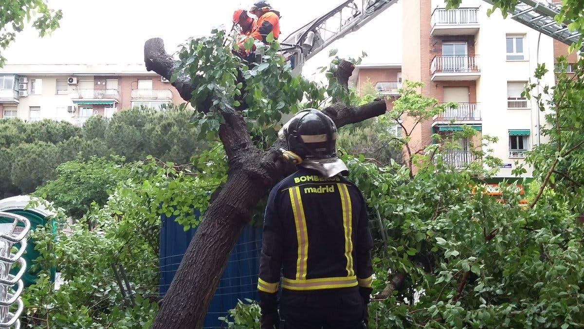 El viento deja en Madrid más de un centenar de intervenciones de los Bomberos