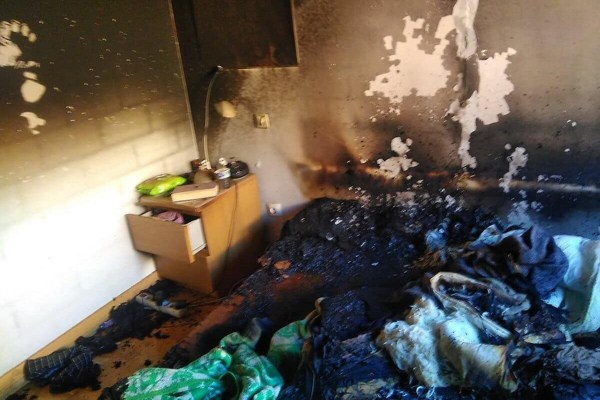 Dos gatos rescatados y un hombre intoxicado por humo en un incendio en Guadalajara