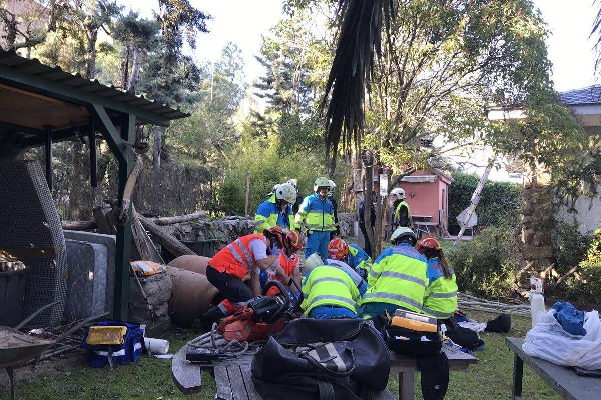 Muere un hombre electrocutado mientras podaba un árbol en Colmenar Viejo