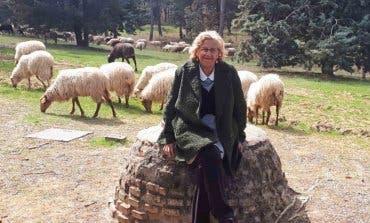 Carmena adopta una cordera tras llenar de ovejas la Casa de Campo