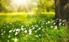 Cálida y seca, así será la primavera que comienza este miércoles