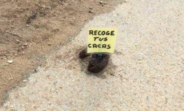 Aparecen cacas de perro con carteles en Daganzo de Arriba