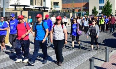 Más de 23.000 personas han hecho este año el Camino de Cervantes