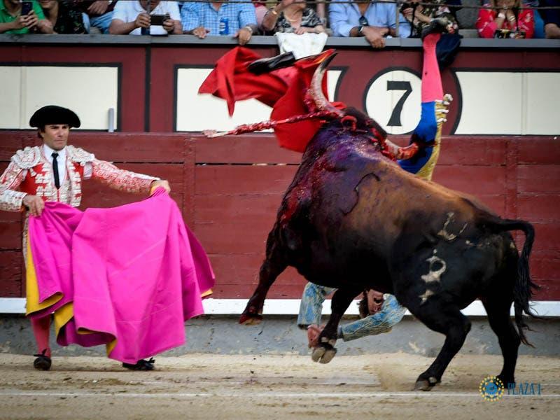 Román evoluciona bien tras sufrir una gravísima cornada en Las Ventas