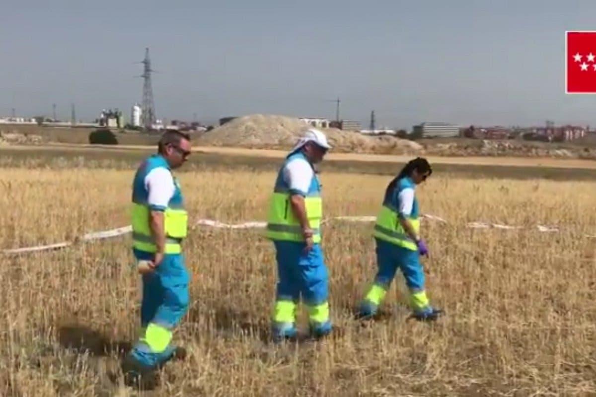 Hallan el cadáver de una anciana en una zona de campo de Getafe