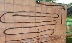 Actos vandálicos en la piscina municipal de Loeches