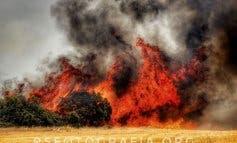 Espectaculares imágenes del incendio de Loranca de Tajuña, ya extinguido