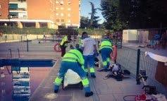 Salvan a un hombre tras sufrir una parada cardiorrespiratoria en una piscina