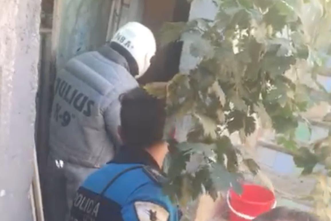 Así capturó la Policía al perro asesino de Coslada