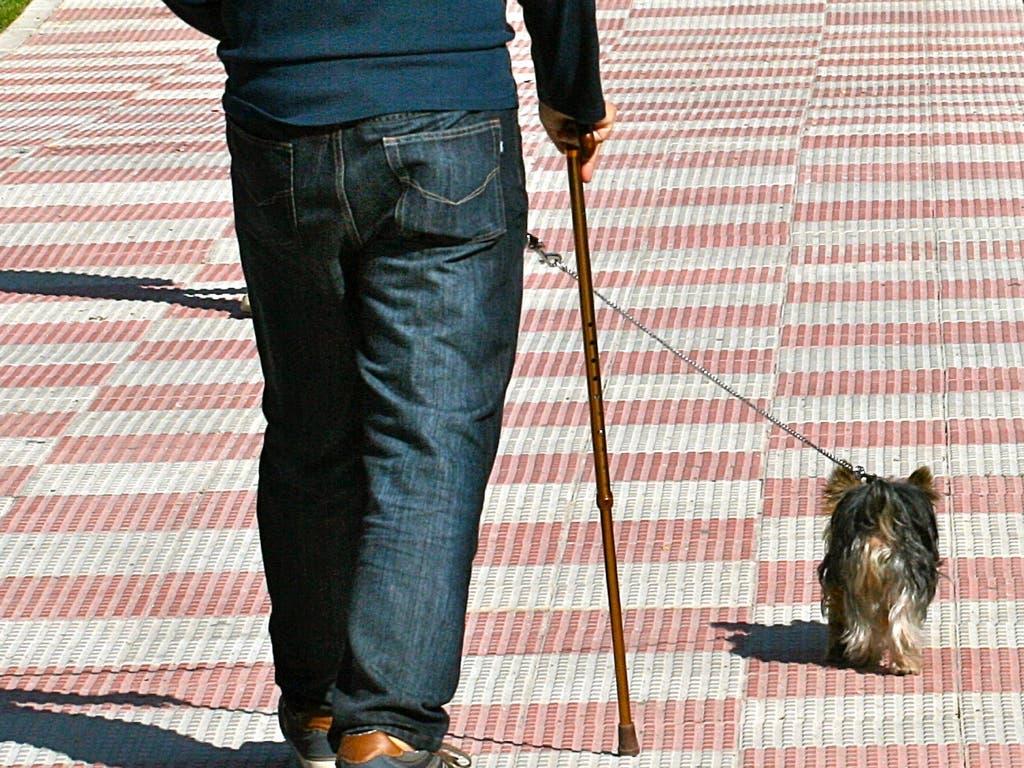 Multa de hasta 600 euros en Coslada por no recoger las cacas de perro