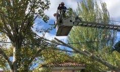 La alerta por viento continuará este lunes en el Corredor del Henares