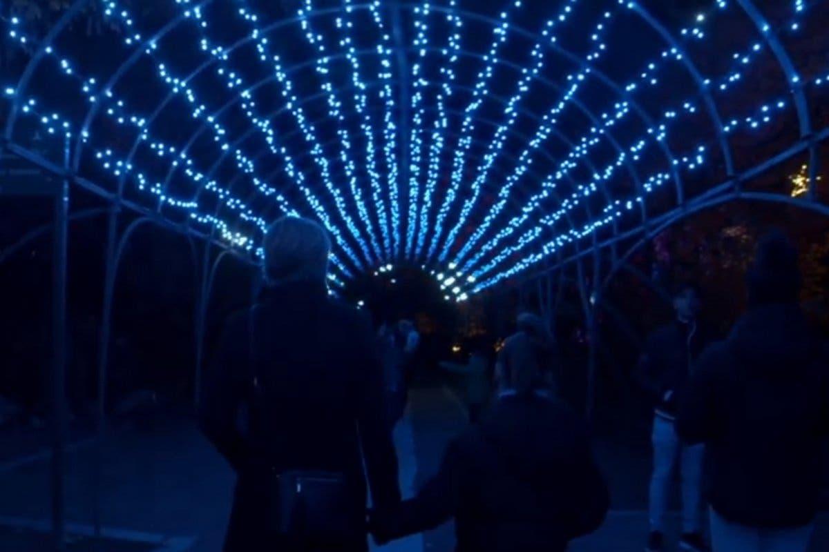 La espectacular iluminación navideña del Real Jardín Botánico de Madrid