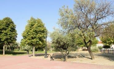 Arganda del Rey plantará 10.000 árboles para reducir las emisiones de CO2