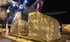 Llega a Madrid el primer avión con material sanitario contratado por Ayuso