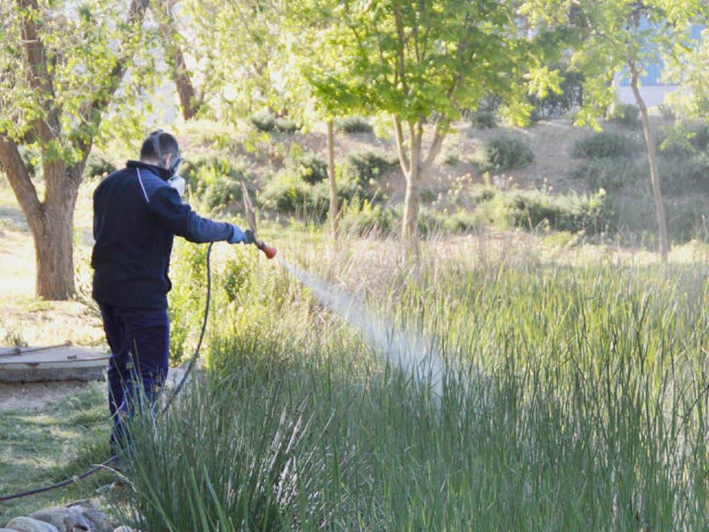 Azuqueca de Henares comienza a aplicar tratamientos contra los mosquitos