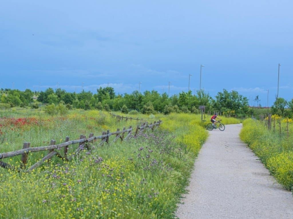 Coslada abre el Parque del Humedal para el paseo de los niños