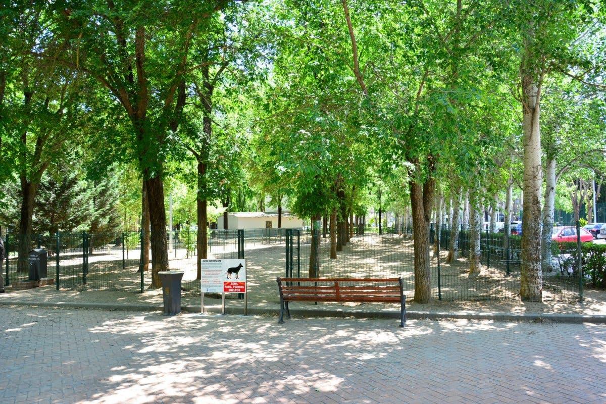 Reabren algunas áreas caninas y los tres grandes parques caninos de Torrejón de Ardoz