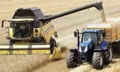 Tiempo de cosecha en los campos de cereal de Daganzo
