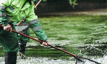 Coslada muestra en un vídeo cómo se limpian los lagos de la ciudad