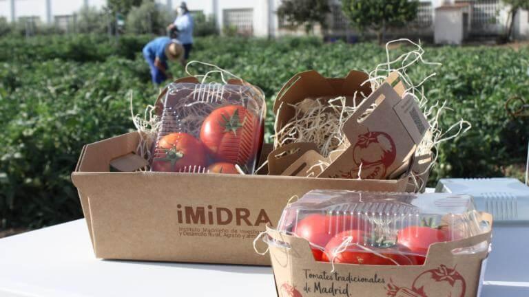 Madrid recupera en Arganda tres variedades de tomates de los años 60