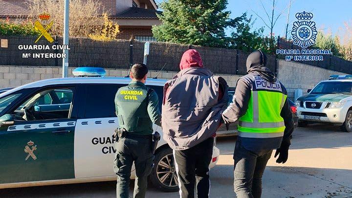 Seis detenidos en Guadalajara por cultivarmás de 5.500 plantas de marihuana