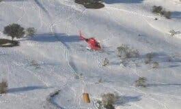 Madrid alimenta desde el aire a 400 animales aislados por la nieve