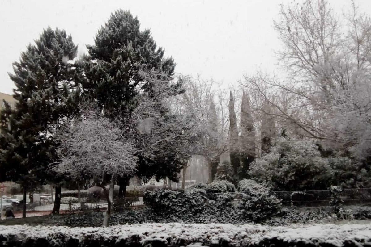 La tarde del viernes y la madrugada del sábado, cuando más nevará en Madrid
