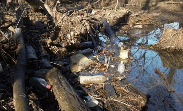 El lamentable estado de los ríos Jarama y Henares a su paso por Mejorada del Campo