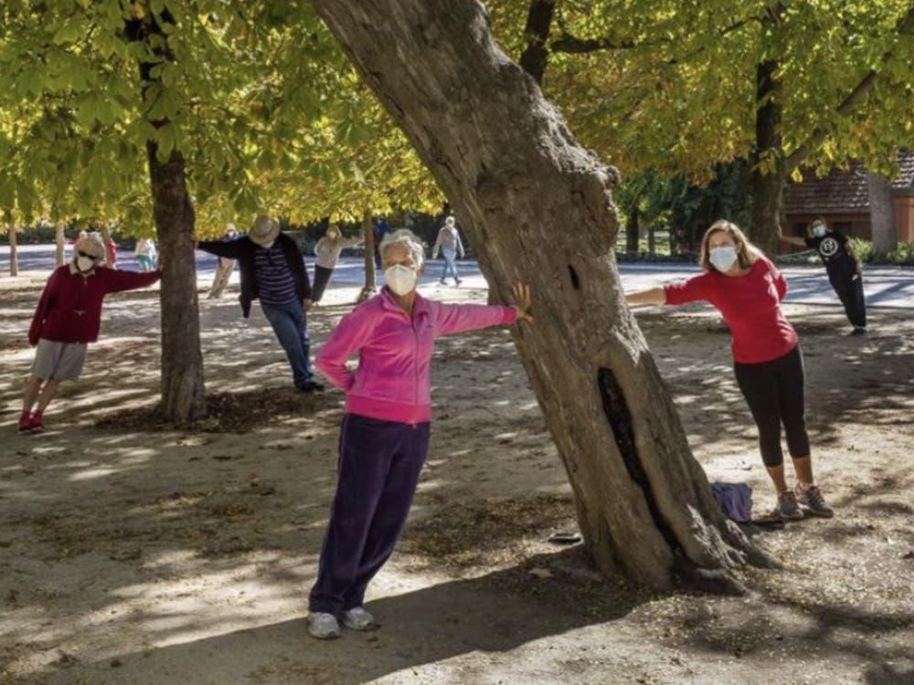 Torrejón organiza gimnasia al aire libre para mayores en los parques de la ciudad