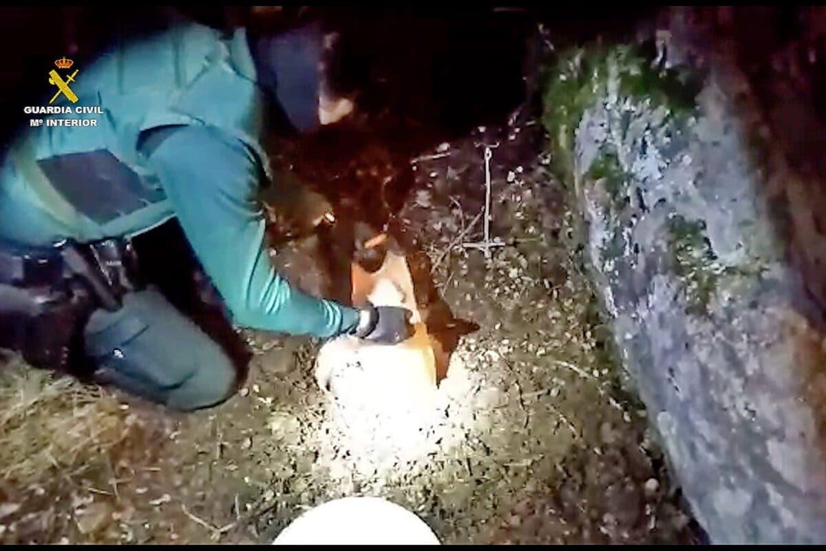 Hallan un zulo repleto de droga en Guadalajara y detienen a 10 personas