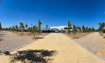 Torrejón de Ardoz planta 420 árboles en Soto del Henares